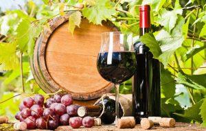 cẩm nang chọn rượu vang đỏ pháp ngon